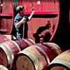 Adelaide & Wine Tour