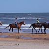 Horse back on the beach