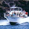 Maui Snuba & Snorkel Package