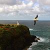 Kilauea Lighthouse and National Wildlife Refuge