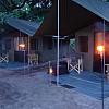 Overnight Safari