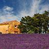 B&B in Provence