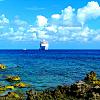 Paradise Island - Cruise