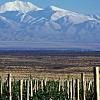 Bodega Alta Vista - a vineyard tour