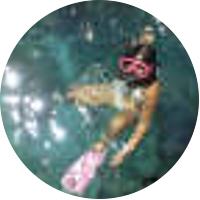 Liko-Kauai Snorkeling and Na Pali sightseeing cruise