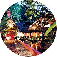 Intimate Dinner at Tamarind Springs
