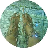 Kenko Foot Reflexology Centre and Wellness Spa
