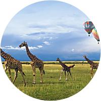 Hot Air Ballooning over Kruger National Park