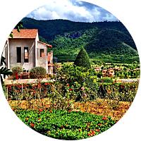 Taste Of Tuscany Tour