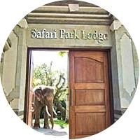 Elephant Safari Park Lodge (4 nights)