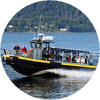 Coastal Wildlife Cruise