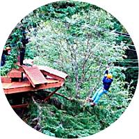 Adventure Park & Ziplines