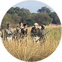 Walking Tour on Safari