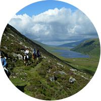 Horseback Ride in Scotland