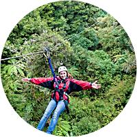 Forest Zipline Canopy Tour