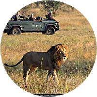 4 Day/Night Safari in Kruger Park in Private Reserve
