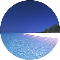 Visit to Muyuni Beach