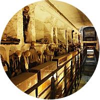 Visit  the Catacombe dei Cappuccini