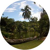 Activity: Smith's Tropical Paradise