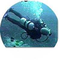 Shore Excursion-Scuba Dive