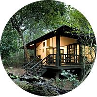 Safari at Phinda Open Space Preserve