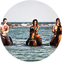 Private Horseback Beach Ride