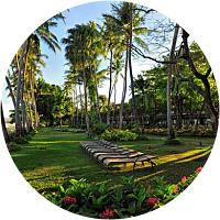 7 nights at the Palm Island Resort