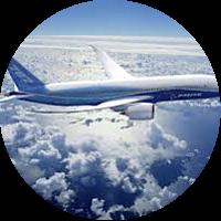 Flight Home