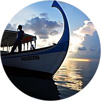 Inter-Island Ferry Transportation