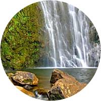 Waterfalls and Rainforest Hike