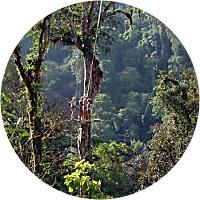 Pacuare Canopy Adventure Tour