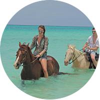 Private Horseback Ride Along Cove Bay in Anguilla