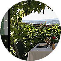 Dinner at Sanglier Paresseux