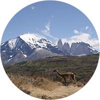 Hiking through Torres del Paine