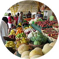 Lahaina Farmer's Market