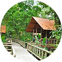 2 nights at the Pachira Lodge