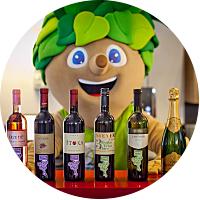 Gljass of wine in Ljubljana