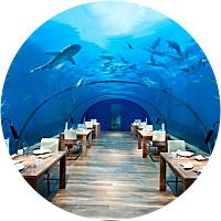 Underwater Dinner!