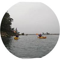 3-Hour Kayaking Tour of Elkhorn Slough in Monterey Bay