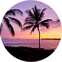 Tahitian Beaches