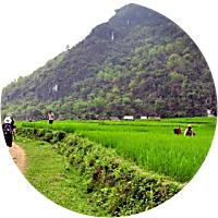 Pu Luong Nature Reserve Trekking Tour