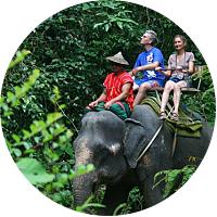 Elephant Safari Park of Desa Taro
