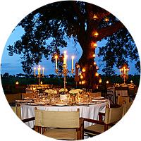 Dinner at Londolozi