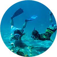 Snorkeling in La Jolla Cove