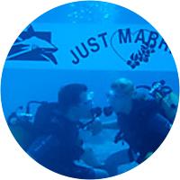 Dive Excursions (4)