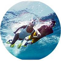 Snorkeling in the Mesoamerican Barrier Reef