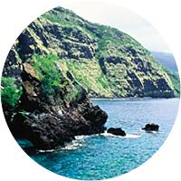 Kealakekua Bay Kayak and Snorkel Tour