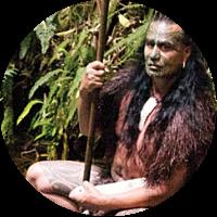 Mitai Maori Village Visit