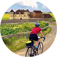 Bikes and Wine