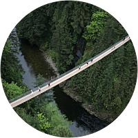 Suspension Bridge & Cliffwalk